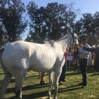 Foto diambil di Veuve Clicquot Polo Classic oleh Cheryl T. pada 10/15/2017