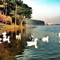1/2/2013 tarihinde Ferit A.ziyaretçi tarafından Aydos Ormanı Göl Kenarı'de çekilen fotoğraf