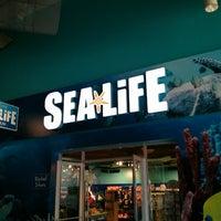 Foto diambil di SEA LIFE Grapevine Aquarium oleh David J. pada 3/23/2013