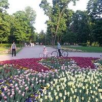 Снимок сделан в Лефортовский парк пользователем Mark K. 5/19/2013