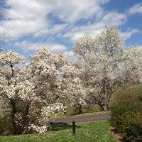 4/13/2013에 Linda L.님이 Morris Arboretum에서 찍은 사진