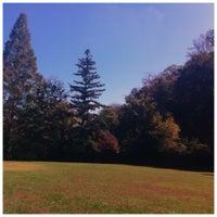 Das Foto wurde bei Lullwater Preserve von Fatima Al Slail am 10/24/2012 aufgenommen
