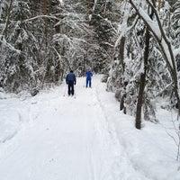 2/17/2013에 Галина П.님이 Охта Парк에서 찍은 사진