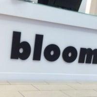 Blooms Friseur C1 6