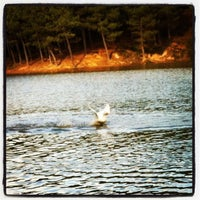 2/7/2013 tarihinde İsmail Hakkı Ö.ziyaretçi tarafından Aydos Ormanı Göl Kenarı'de çekilen fotoğraf