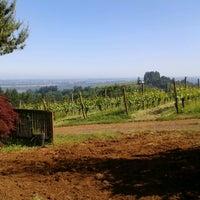 Foto diambil di Dobbes Family Estate Winery oleh Leonard P. pada 6/3/2013