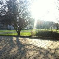 Foto tirada no(a) Rheinschafe por Samanta S. em 1/13/2013