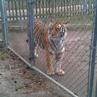 Foto tirada no(a) Alabama Gulf Coast Zoo por Stephanie M. em 12/28/2012