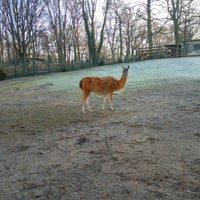 12/30/2016에 Hie-suk Y.님이 Tierpark Neukölln에서 찍은 사진
