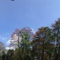 Foto tomada en Parque del Este por Dayhana S. el 3/16/2013
