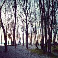 Foto tirada no(a) Golden Gardens Park por Johannes E. em 4/27/2013