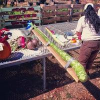 Foto tomada en Jared's Nursery Gift & Garden por Aaron W. el 9/29/2012