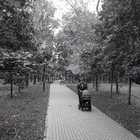 Снимок сделан в Чапаевский парк пользователем Andrey B. 6/16/2013