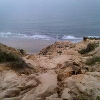 3/14/2013にAllison R.がLa Jolla Cliffsで撮った写真