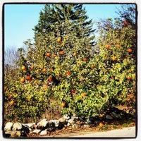 10/27/2012에 Derek P.님이 SMOLAK FARMS에서 찍은 사진