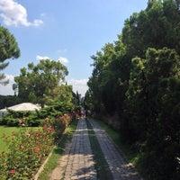Foto scattata a Parco Giardino Sigurtà da Stefano G. il 8/18/2014