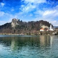 Foto scattata a Blejski Grad | Bled Castle da Emerson G. il 4/11/2013
