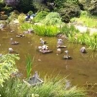 Снимок сделан в San Francisco Botanical Garden пользователем Leslie H. 4/25/2012
