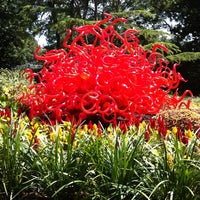 5/19/2012 tarihinde Seattle's G.ziyaretçi tarafından Dallas Arboretum and Botanical Garden'de çekilen fotoğraf