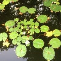Foto tomada en Conservatory Garden por Foladé el 8/2/2012