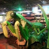 รูปภาพถ่ายที่ Omaha Children's Museum โดย Roderick เมื่อ 6/11/2013