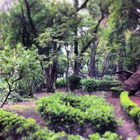 Foto tomada en Parque México por Gerardo el 6/26/2013