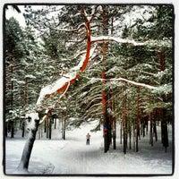 Снимок сделан в Пик Тяпкина пользователем Eugene U. 2/1/2013