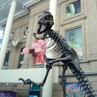 7/21/2013にTerry K.がDenver Museum of Nature and Scienceで撮った写真