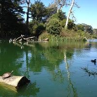 Das Foto wurde bei Golden Gate Park von Dmitry am 10/3/2012 aufgenommen