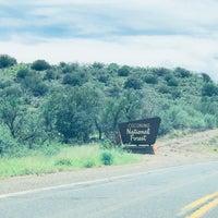 8/24/2018にGreg D.がCoconino National Forestで撮った写真