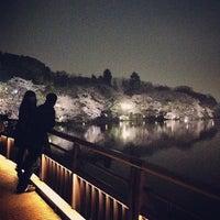 3/24/2013にorinが井の頭恩賜公園で撮った写真