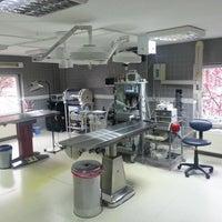 รูปภาพถ่ายที่ VTM - Hayvan Hastanesi โดย Bulent İ. เมื่อ 7/9/2013