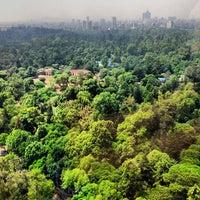 Photo prise au Bosque de Chapultepec par Jose Manuel F. le7/22/2013
