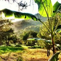 Foto scattata a Shanti Garden da Tolga A. il 8/12/2013