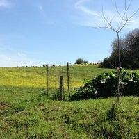 Foto diambil di Parco Regionale dell'Appia Antica oleh Giovanni M. pada 4/7/2013