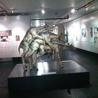 Foto scattata a Museum of Sex da Natasha il 12/31/2012