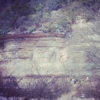 1/21/2013にAvery S.がBarton Creek Greenbeltで撮った写真
