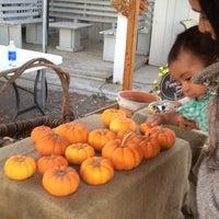 10/20/2013에 Pervez T.님이 SMOLAK FARMS에서 찍은 사진