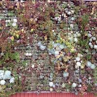 Photo prise au Flora Grubb Gardens par Jorge R. H. le9/30/2012