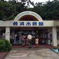 水族館 桂浜 【アクセス】桂浜水族館