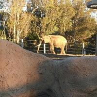 Das Foto wurde bei Elephant Odyssey von Vet J. am 1/17/2013 aufgenommen