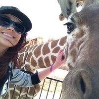 Tanganyika Wildlife Park - Goddard, KS
