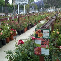 Photo Taken At Lakewood Nursery By William A On 6 2 2017