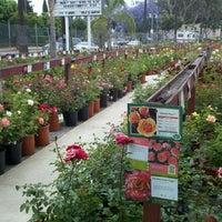 Lakewood Nursery Garden Center