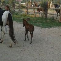 5/4/2013 tarihinde Cagri O.ziyaretçi tarafından Laren Safari Park'de çekilen fotoğraf