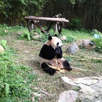 Das Foto wurde bei Xiang Jiang Safari Park, Guangzhou von Katty C. am 1/12/2013 aufgenommen
