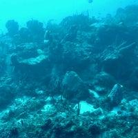 Foto tomada en Atlantis Submarine por Brian Z. el 10/28/2016