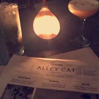 Foto scattata a Alley Cat Lounge da Natalie il 4/6/2018