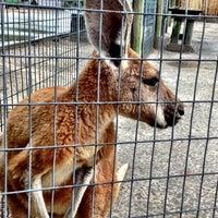 Foto tirada no(a) Alabama Gulf Coast Zoo por Sondra J. em 7/7/2013