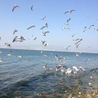Photo prise au İnciraltı Sahili par Anıl le5/2/2013